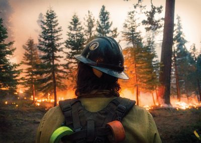 Wilder Than Wild: Fires, Forests & the Future – 3:00 pm UNS 57 min.